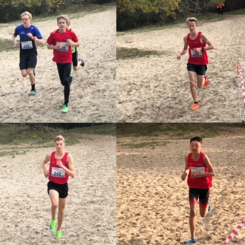 AVD Cross 2019 - Dwingeloo (26-10-2019)